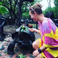 Syöttämässä kilpikonnaa - koko ajan pelotti, että se haukkaa minusta palan