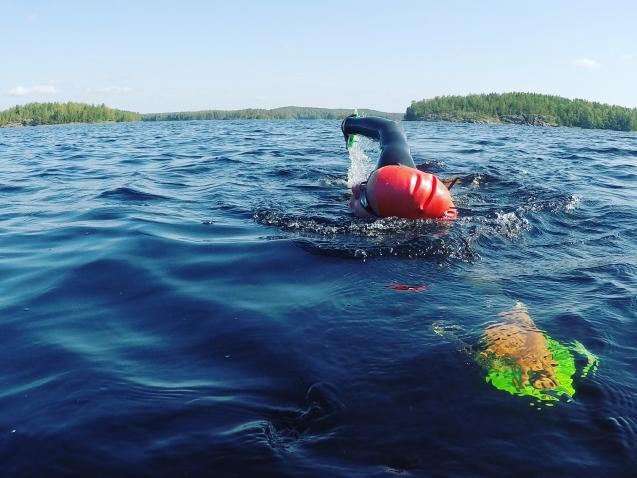 Avovedessä uimassa Saimaalla