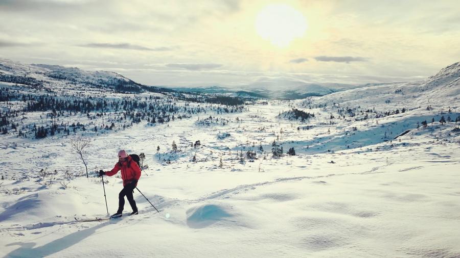 Trondheimissa hiihtämässä